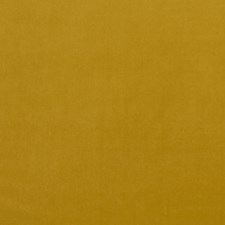 Honey Drapery and Upholstery Fabric by Clarke & Clarke
