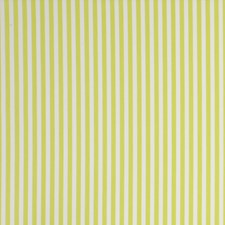 Stripe Citrus Drapery and Upholstery Fabric by Clarke & Clarke