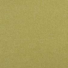 Fern Solid w Drapery and Upholstery Fabric by Clarke & Clarke
