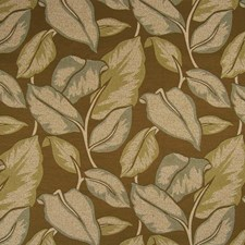 Caribbean Drapery and Upholstery Fabric by Kasmir