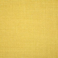 Sunburst Solid Drapery and Upholstery Fabric by Pindler