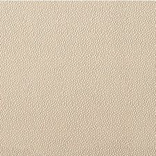 Sandbar Animal Skins Drapery and Upholstery Fabric by Kravet