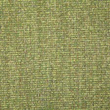 Leaf Solid Drapery and Upholstery Fabric by Pindler