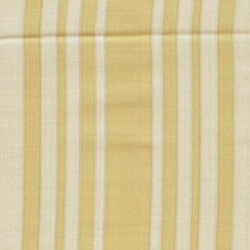 Champagne/Gold Drapery and Upholstery Fabric by RM Coco