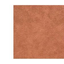 Alezan Drapery and Upholstery Fabric by Scalamandre