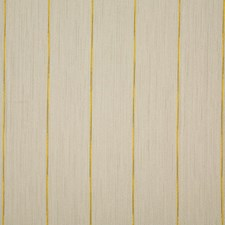 Daisy Stripe Drapery and Upholstery Fabric by Pindler