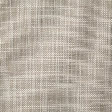 Dove Solid Drapery and Upholstery Fabric by Pindler