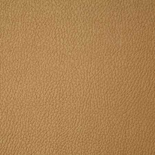 Teak Solid Drapery and Upholstery Fabric by Pindler