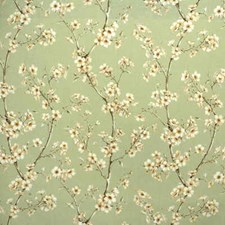 Peach Drapery and Upholstery Fabric by Kravet