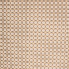 Burnished Metal Drapery and Upholstery Fabric by RM Coco