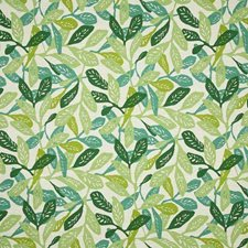 Aloe Contemporary Drapery and Upholstery Fabric by Pindler