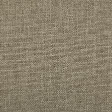 Silver Lining Drapery and Upholstery Fabric by RM Coco