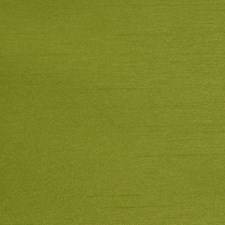 Keylime Drapery and Upholstery Fabric by RM Coco
