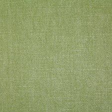 Celadon Solid Drapery and Upholstery Fabric by Pindler