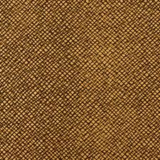 Oiled Copper Drapery and Upholstery Fabric by Robert Allen