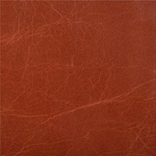 L-Haute-Madder Solids Drapery and Upholstery Fabric by Kravet