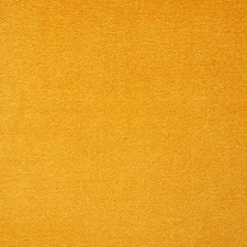 Butternut Solid Drapery and Upholstery Fabric by Pindler
