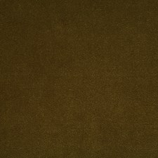 Loden Solid Drapery and Upholstery Fabric by Pindler