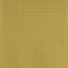Stem Drapery and Upholstery Fabric by RM Coco