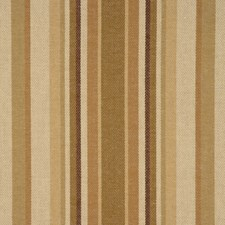 Earthen Drapery and Upholstery Fabric by RM Coco