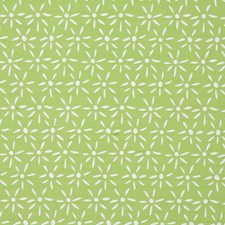 Lime Drapery and Upholstery Fabric by Pindler
