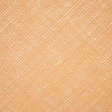Papaya Drapery and Upholstery Fabric by Pindler