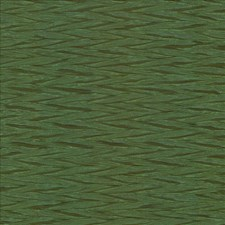 Grass Drapery and Upholstery Fabric by Kasmir