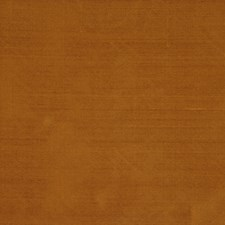 Oak Drapery and Upholstery Fabric by RM Coco