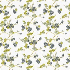 Nightingale Drapery and Upholstery Fabric by Kasmir
