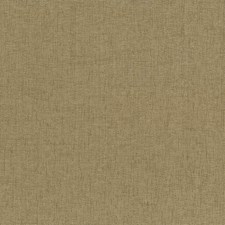 Cashew Drapery and Upholstery Fabric by Kasmir