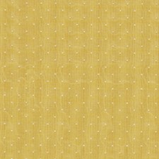 Dijon Drapery and Upholstery Fabric by Robert Allen /Duralee