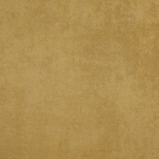 Gold Drapery and Upholstery Fabric by Maxwell