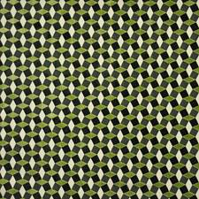 Grass Drapery and Upholstery Fabric by Maxwell