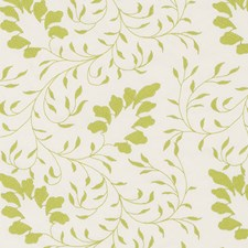 Celery Embroidery Drapery and Upholstery Fabric by Duralee