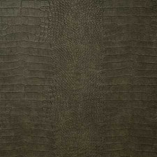 Shadow Drapery and Upholstery Fabric by Pindler