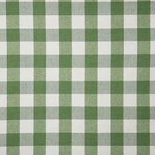 Kiwi Check Drapery and Upholstery Fabric by Pindler