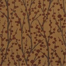 SHERIDAN 18J5083 by JF Fabrics