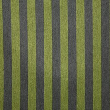 Leaf Stripe Drapery and Upholstery Fabric by Pindler