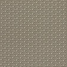 Papyrus Drapery and Upholstery Fabric by RM Coco
