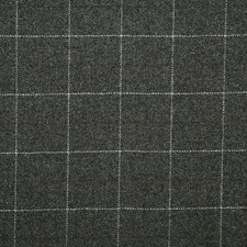 Flint Check Drapery and Upholstery Fabric by Pindler