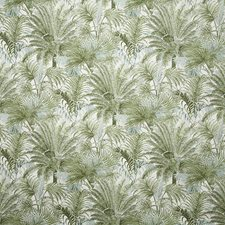 Palm Traditional Drapery and Upholstery Fabric by Pindler