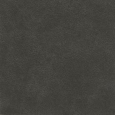Charcoal Drapery and Upholstery Fabric by Silver State