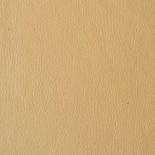 Butternut Solids Drapery and Upholstery Fabric by Kravet