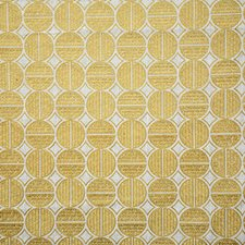 Coin Drapery and Upholstery Fabric by Pindler
