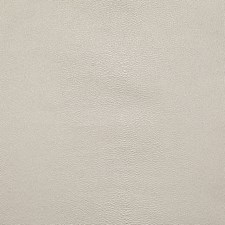 Champagne Solid Drapery and Upholstery Fabric by Pindler