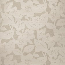 Taupe On Vanilla Floral Wallcovering by Stroheim Wallpaper