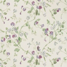 Violet Wallcovering by Cole & Son Wallpaper