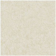 Cream Print Wallcovering by Cole & Son Wallpaper