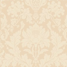Buff Print Wallcovering by Cole & Son Wallpaper