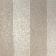 Brown/Creme/Beige Transitional Wallcovering by JF Wallpapers